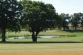 Skovbo Golfklub